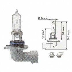 Lemputė PHILIPS  65W 12V P20d HB3 PREMIUM+30%