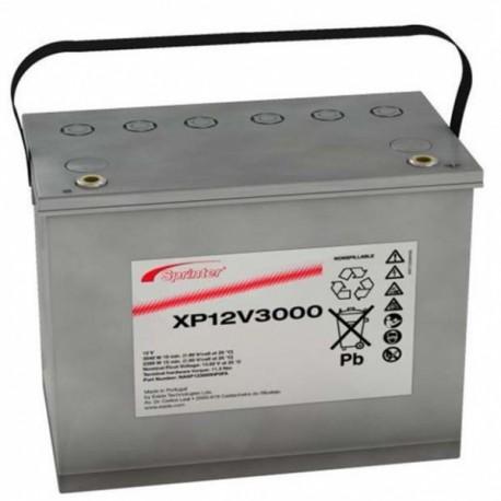 xp12v3000.jpg