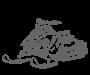 Akumuliatoriai sniego motociklams