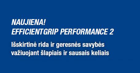 Goodyear sezono naujiena - EfficientGrip Performance 2